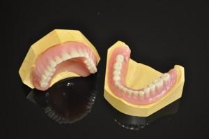 Independent Dentures 14