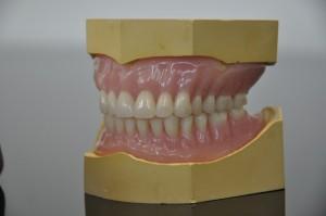 Independent Dentures 8